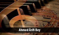 Ahmed Ârifi Bey (1855-1908)