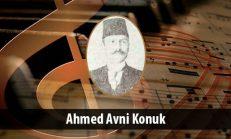 Ahmed Avni Konuk (1868-1938)