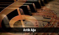 Astik Ağa (1840-1913)