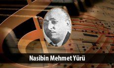 Nasibin Mehmet Yürü (1882-1953)