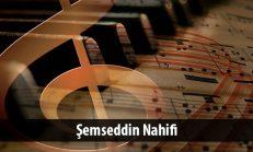 Şemseddin Nahifi ( ? -1494)