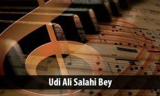 Udi Ali Salahi Bey (1878-1945)